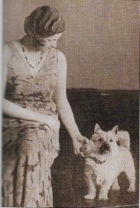 histoire cairn terrier