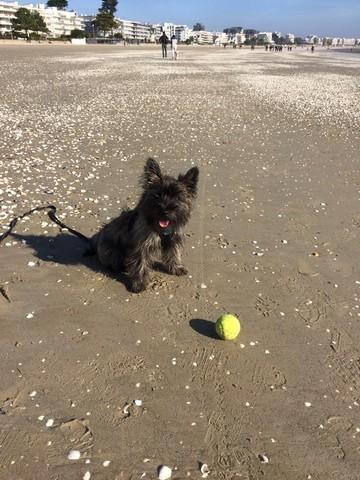 Au soleil sur la plage
