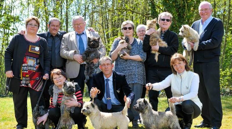 cairn terrier famille