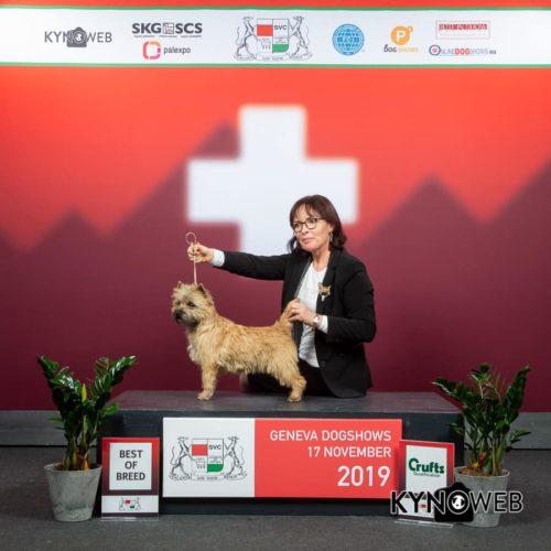 Nefertiti Championne Suisse