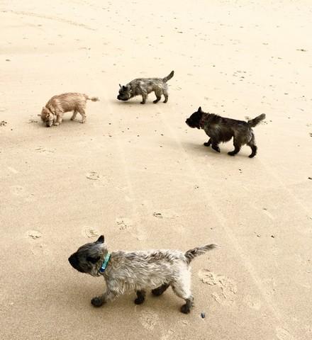 la plage est à nous